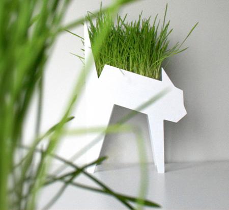 Snygg kattgräs kruka