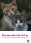 katt_broschyr_high-1